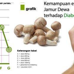 kemampuan ekstrak jamur dewa terhadap diabetes